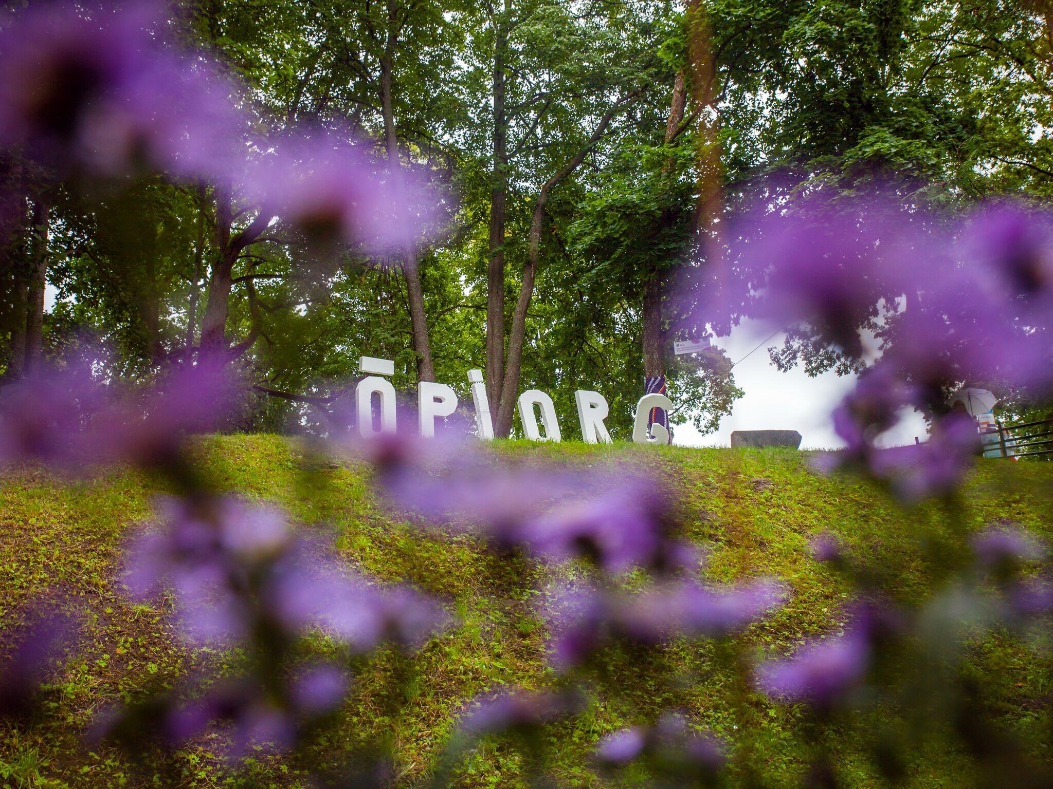 Õpiorg. Foto: Anna Markova
